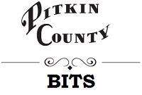 PC BITS Logo 1